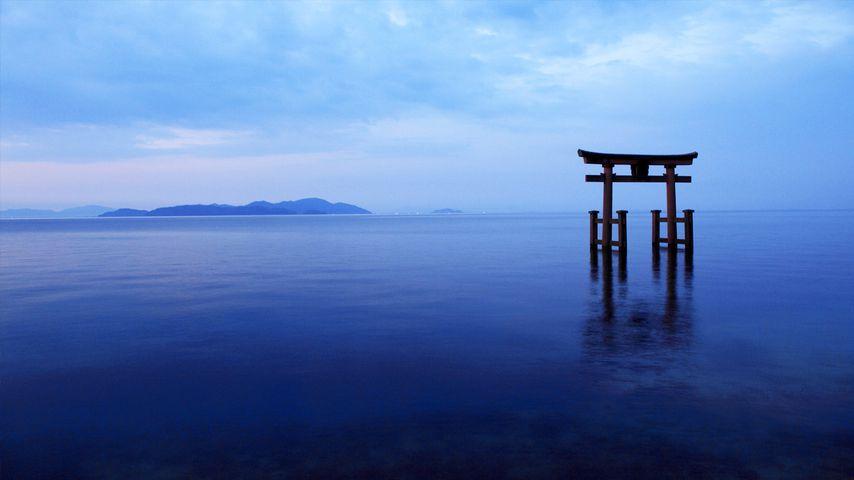 「白鬚神社鳥居」滋賀, 琵琶湖
