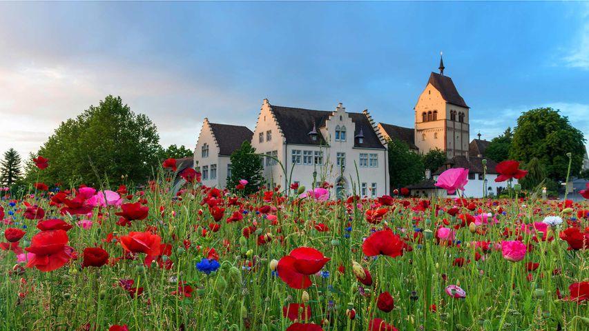 「聖マリア・マルクス教会」ドイツ, ライヒェナウ島