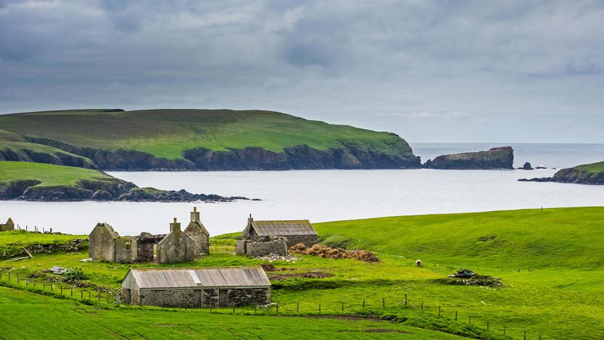 「シェトランド諸島の古い農場」イギリス, スコットランド