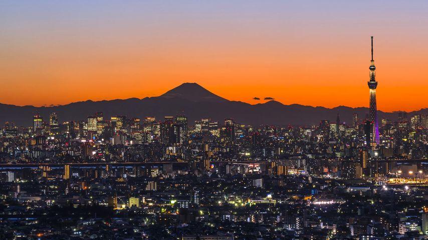 「富士山と東京スカイツリー」千葉県, 市川市