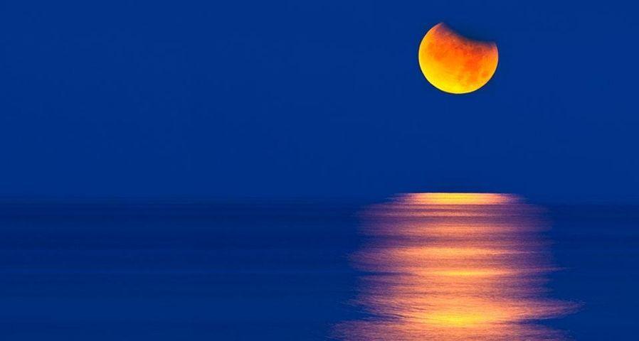 「メキシコの月食」