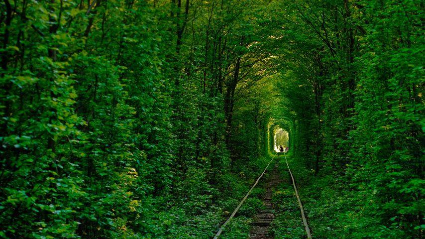 「愛のトンネル」ウクライナ, クレーヴェン