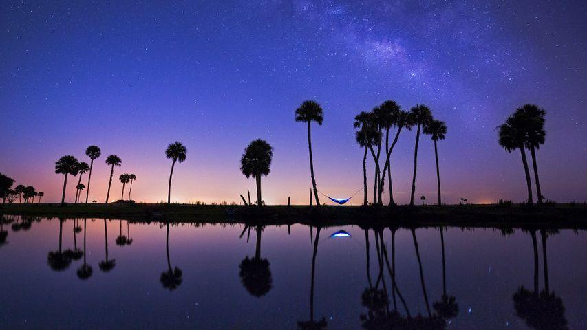 「イーコンロックハッチー川とハンモック」米国フロリダ州