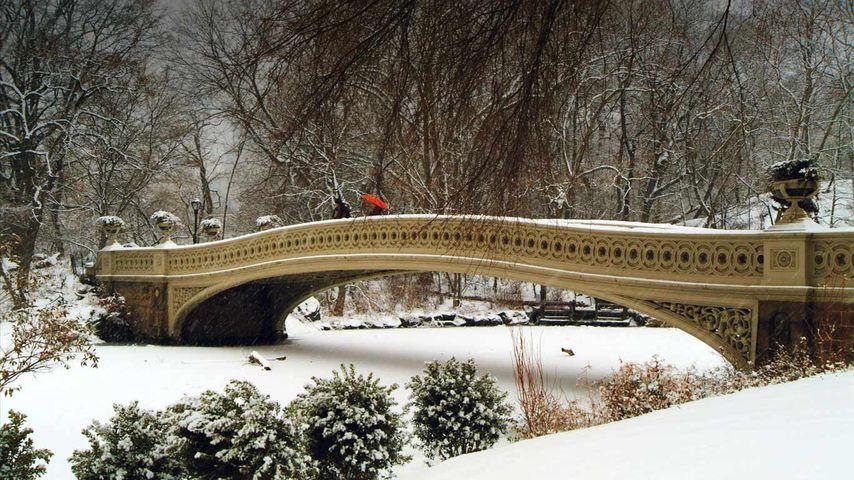 「ボウ・ブリッジ」アメリカ, ニューヨーク