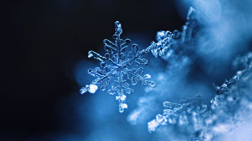 「雪の結晶」