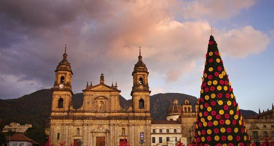 「ボリバール広場の大聖堂とツリー」コロンビア, ボゴタ, サンタ・フェ・デ・ボゴタ歴史地区