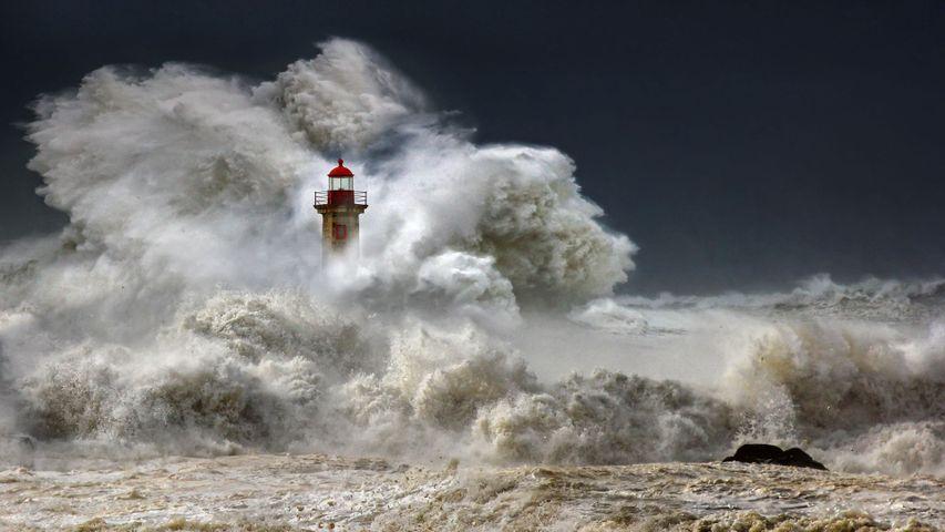 「フェルゲイラス灯台」ポルトガル, ポルト