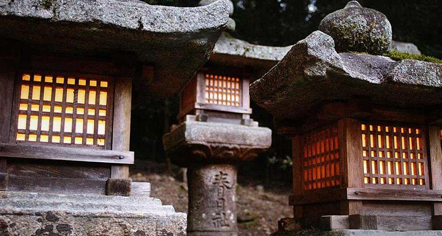 「春日大社の灯篭」奈良, 奈良市
