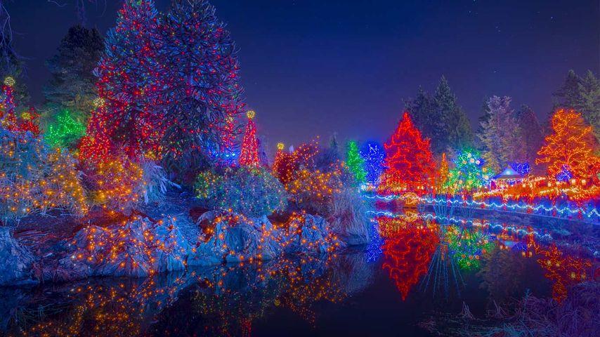 「フェスティバル・オブ・ライト」カナダ, ブリティッシュコロンビア州