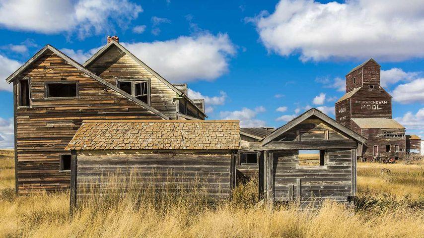 「ゴーストタウンの穀物小屋」カナダ, サスカチュワン州