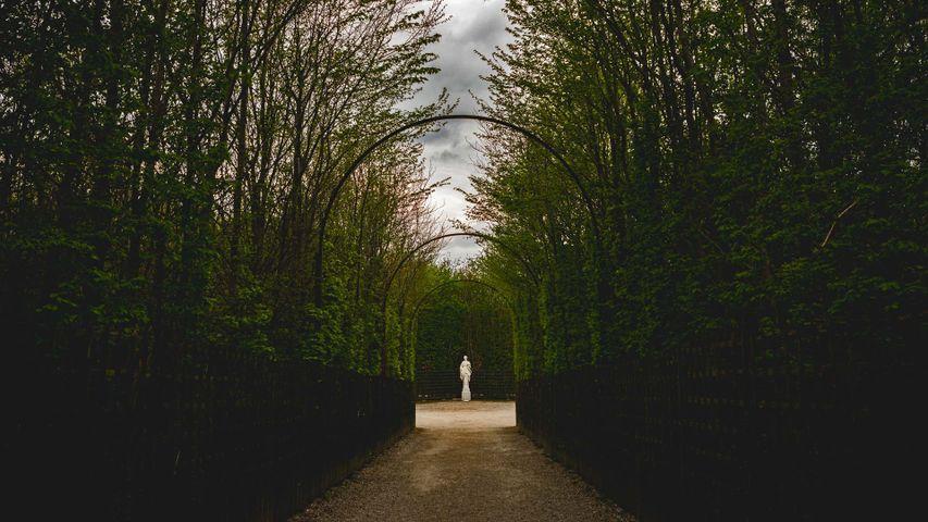 「ヴェルサイユ庭園の散歩道」フランス, ヴェルサイユ