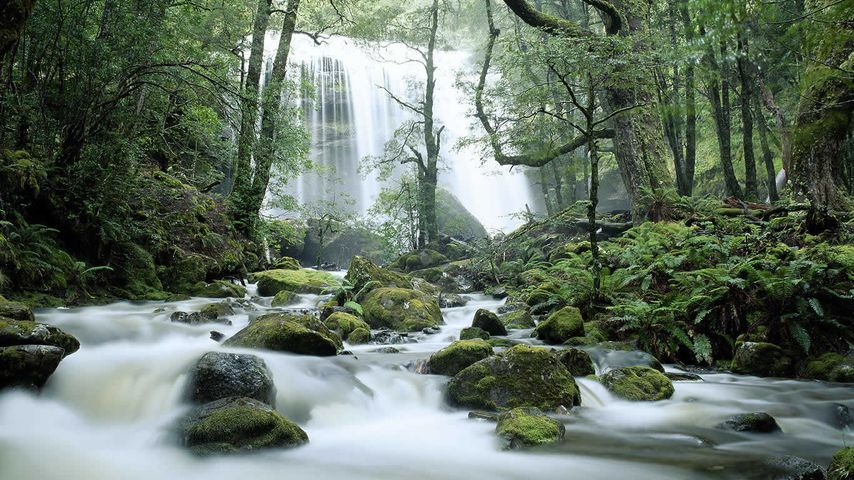 「イェルサレム川と滝」オーストラリア, タスマニア州