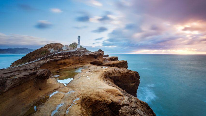「キャッスルポイント灯台」ニュージーランド北島, キャッスルポイント景観保護区