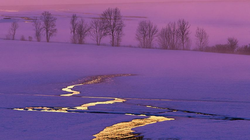 「夕暮れの雪原」スイス, ミッテルラント地方