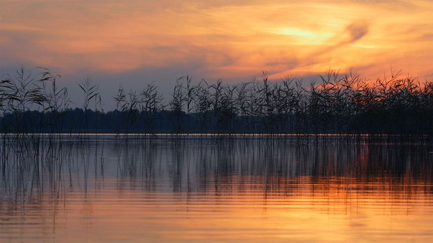 「エジェゼルス湖」ラトビア, ラトガレ