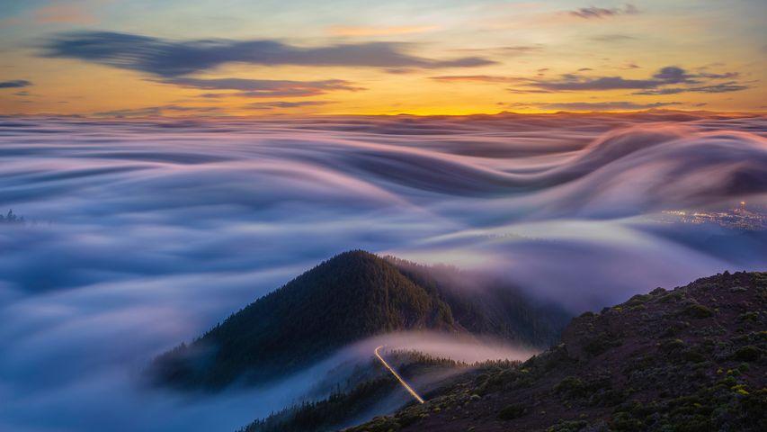 「テネリフェ島の雲海」スペイン, カナリア諸島