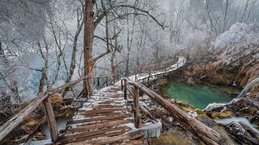 「プリトヴィツェ湖群国立公園」クロアチア