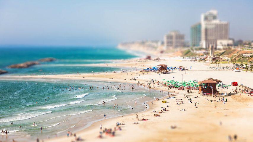 「ヘルツリーヤの浜辺」イスラエル, テルアビブ地区