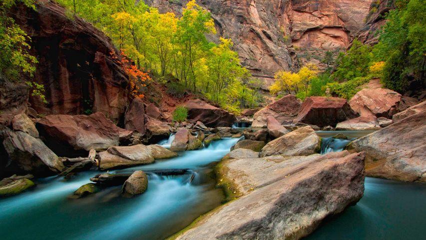 「バージン川」米国ユタ州, ザイオン国立公園
