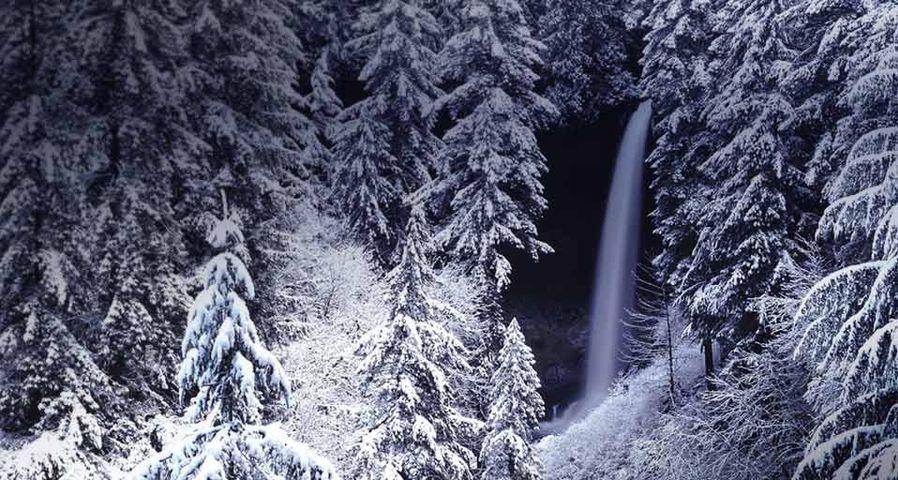 「シルバー・フォールズ州立公園」アメリカ, オレゴン州