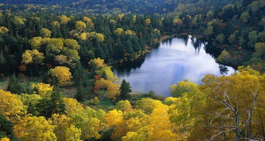 「十和田湖」東北地方, 十和田八幡平国立公園