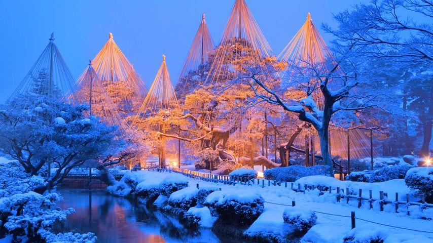「兼六園のライトアップ」石川県,  金沢市