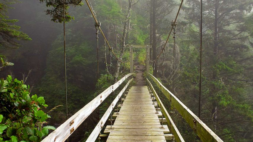 「ウエスト・コースト・トレイル」カナダ, バンクーバー島