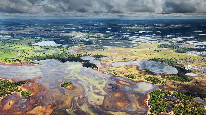 「パンタナル湿原」ブラジル