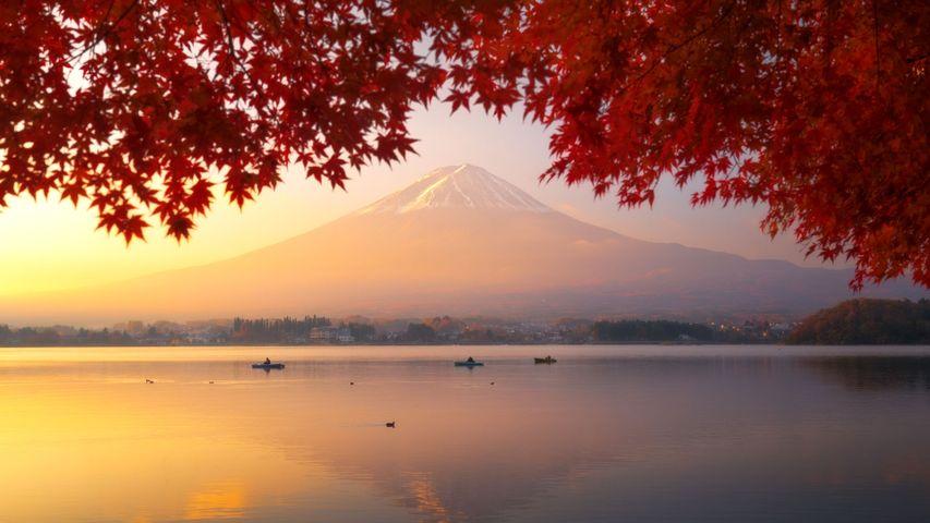 「河口湖から見た朝焼けの富士山」山梨