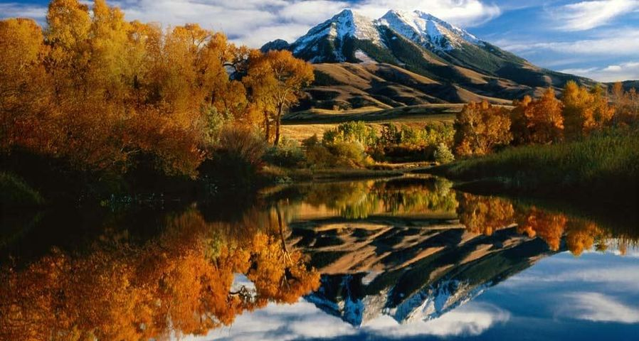「パラダイス・バレーの秋」アメリカ, モンタナ州
