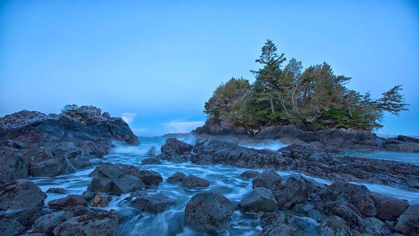 「トフィーノの浜辺」カナダ, ブリティッシュコロンビア州
