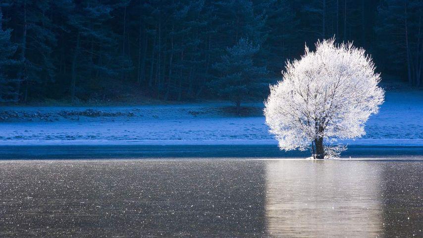 「湖と霧氷」フランス, プロヴァンス=アルプ=コート・ダジュール地域圏