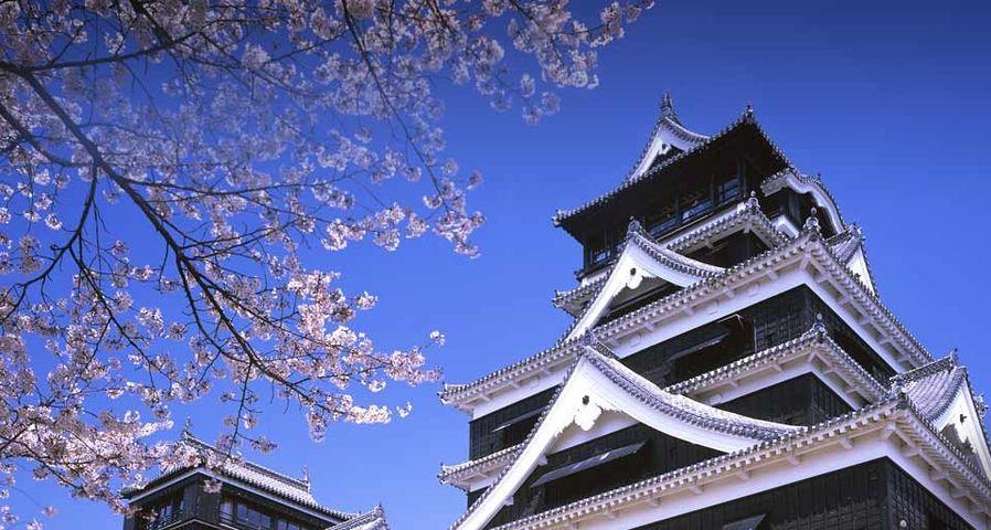 「熊本城」熊本