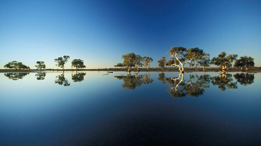 「ウーレン・ステーション」オーストラリア