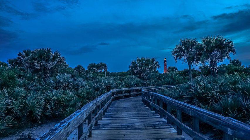 「ポンス・デ・レオン・インレット灯台への道」米国フロリダ州