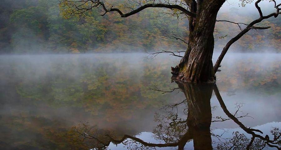 「注山池」大韓民国, 周王山国立公園