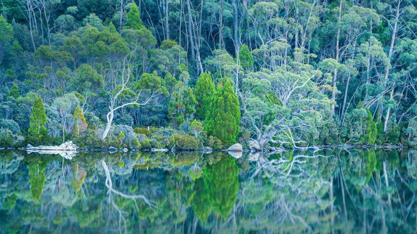 「ドブソン湖」オーストラリア, タスマニア
