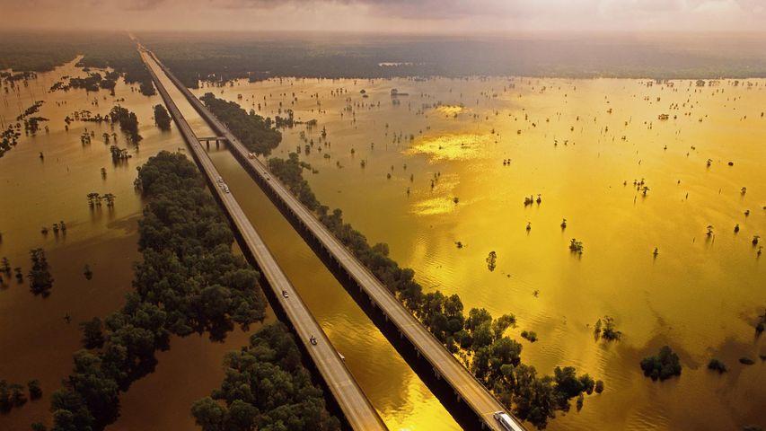 「アチャファラヤ・ベイスン・ブリッジ」米国ルイジアナ州