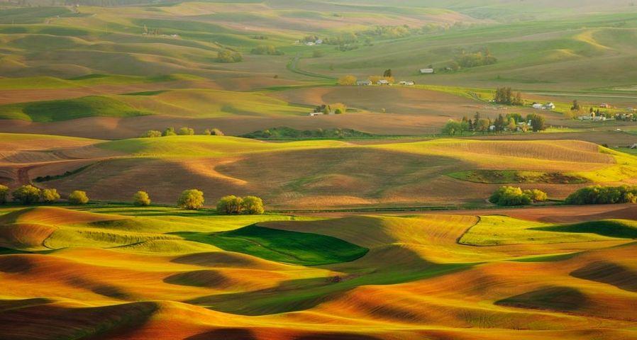 「パルースの丘」アメリカ, ワシントン州