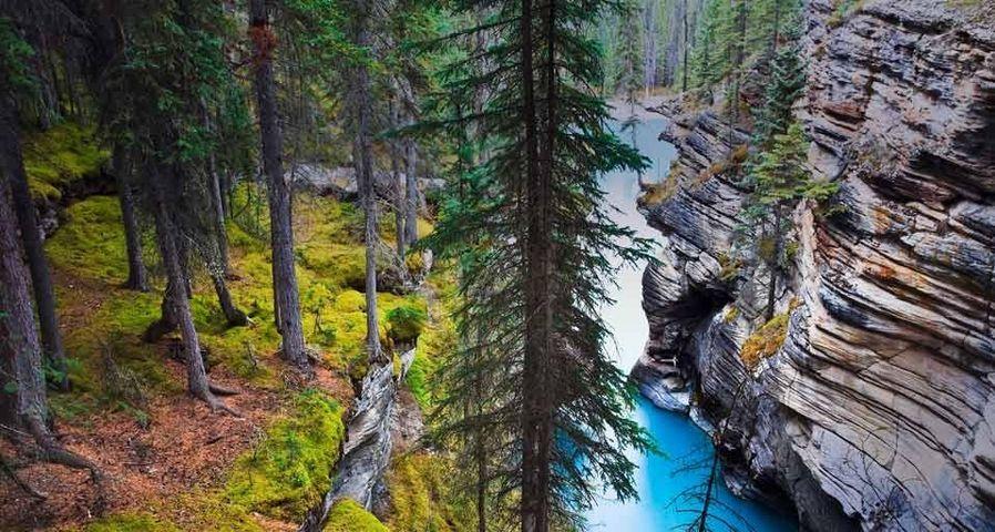 「アサバスカ川」カナダ, アルバータ州