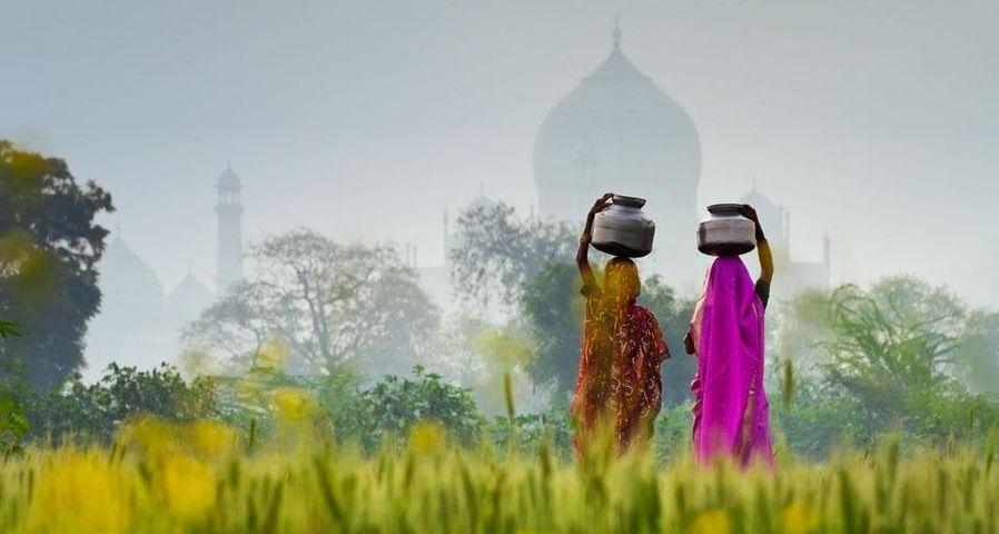 「水瓶を運ぶ女性たち」インド, アーグラ, タージ・マハル