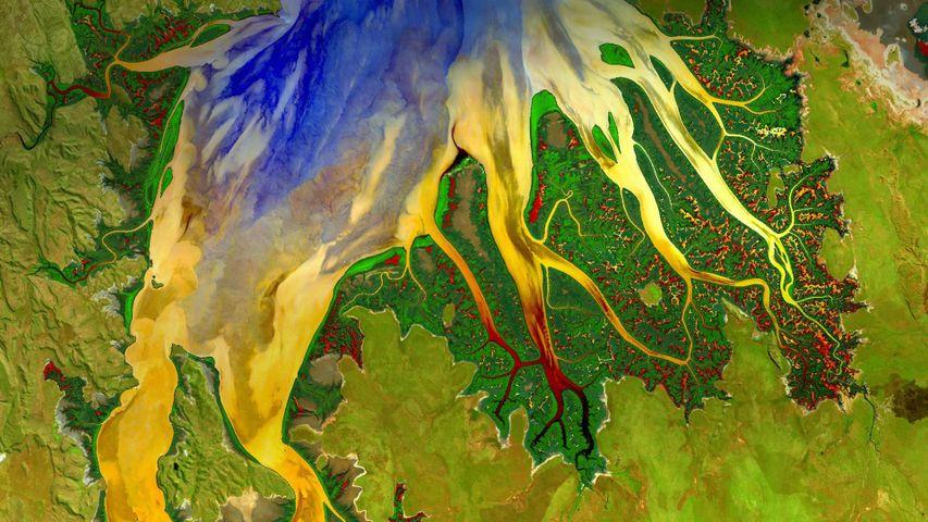 「ランドサットが撮影した西オーストラリアの河口」