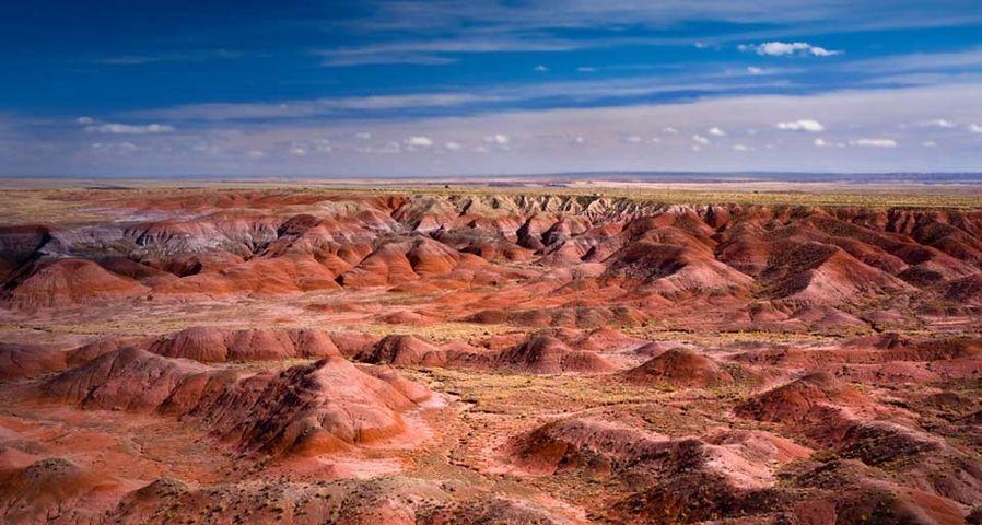 「ペインテッド・デザート」アメリカ, アリゾナ州, 化石の森国立公園