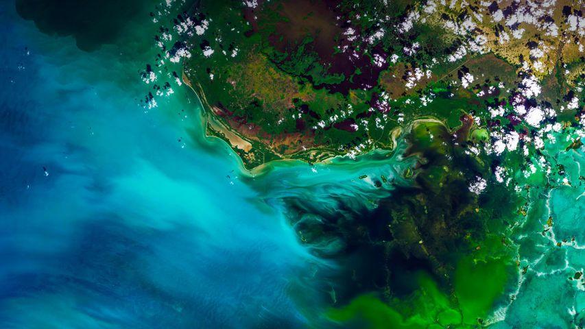 「エバーグレーズ国立公園」アメリカ, フロリダ州