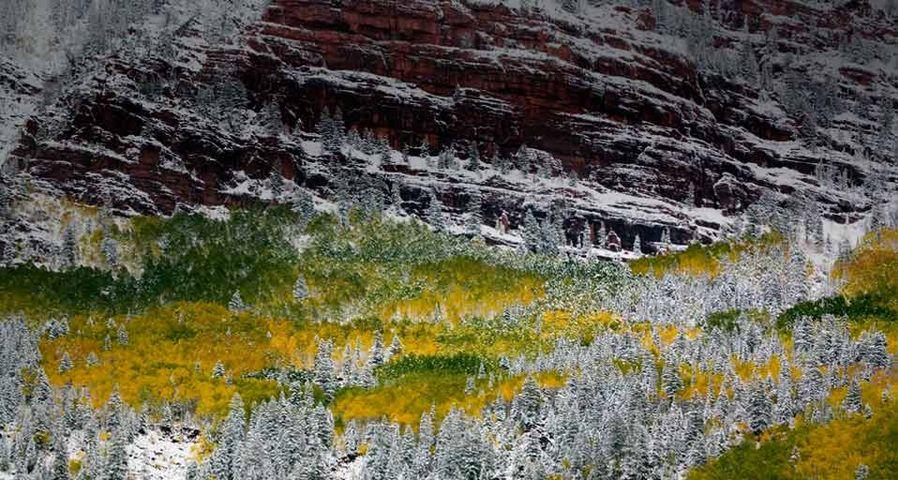 「レッド・クリフス」アメリカ, コロラド州, ホワイト・リバー国有林