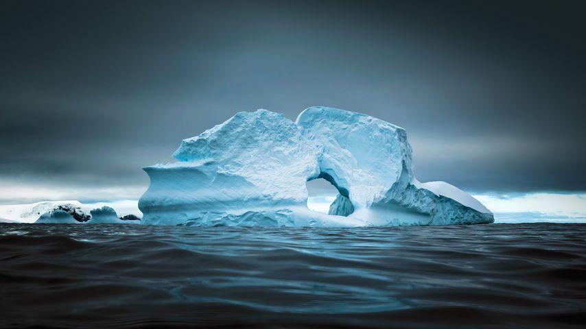 「シエルバ・コーブ」南極半島