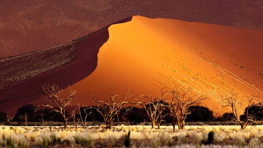 「ソススフレイ砂丘」ナミビア