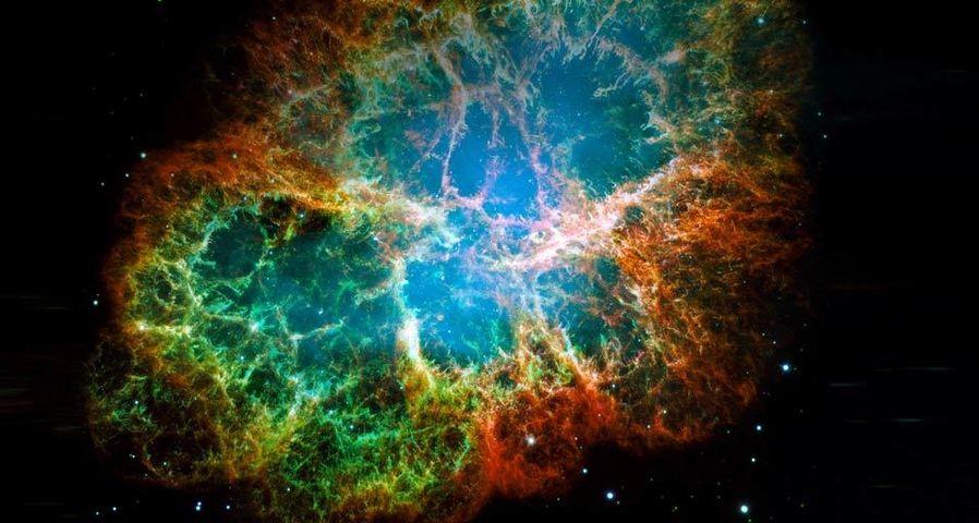 「かに星雲」
