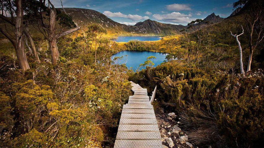「クレイドル山国立公園」オーストラリア, タスマニア