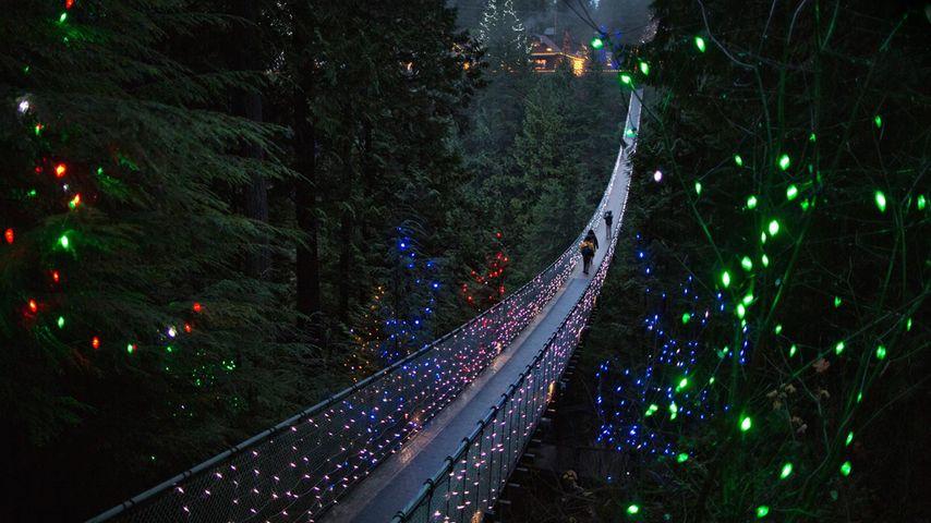 「夜のキャピラノ吊り橋」カナダ, バンクーバー